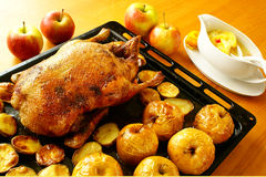 Roasted duck Royalty Free Stock Photos