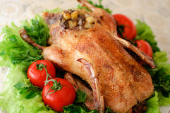 Roasted duck Royalty Free Stock Image