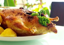 Roasted duck. The roasted duck with potatoes and herbs Royalty Free Stock Photos