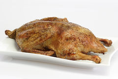 Roasted duck Royalty Free Stock Photo