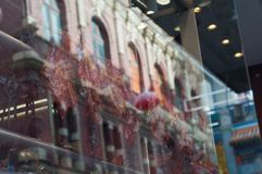 Roasted duck and BBQ pork hanged near Chinese restaurant window in Melbourne Australia stock photos