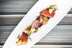 Roasted duck breast with cranberry and deluded balsamic sauce on Royalty Free Stock Photos