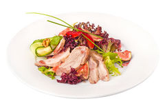 Roasted duck breast with fig sauce Stock Photos