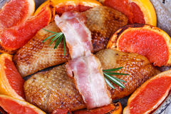 Roasted duck breast fillet with bacon and grapefruit. Royalty Free Stock Photos