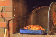 Roasted duck at firewood oven background Royalty Free Stock Images