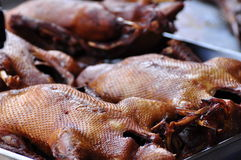 Roasted duck. Food good taste in Thailand,Asia stock image