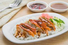 Roasted duck with gravy and rice Royalty Free Stock Photos