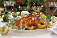 Roasted Duck for Holiday Royalty Free Stock Images