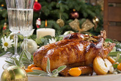 Roasted Duck for Holiday Stock Photos