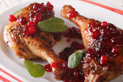 Roasted duck leg with cranberry sauce and mint closeup. horizont Royalty Free Stock Photos