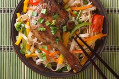 Roasted duck leg with rice noodles on a bamboo table. top view Stock Image