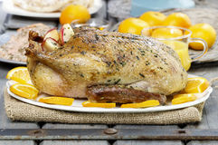 Roasted duck with oranges on wooden table Royalty Free Stock Photos