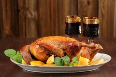 Roasted duck with quince, mint and red wine Royalty Free Stock Photos
