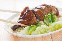 Roasted duck rice Stock Photography