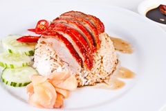 Roasted Duck with Rice2 Royalty Free Stock Photo