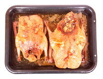 Roasted ducks Stock Images