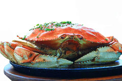 Roasted Dungeness Whole Red  Crab Stock Photos