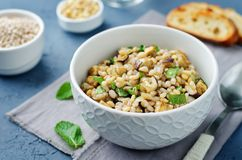 Roasted eggplant pine nuts mint barley salad. Toning. selective focus royalty free stock photos