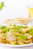 Roasted fennel discs with limes Stock Image