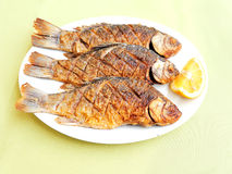Roasted fish Stock Photos