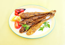 Roasted fish Stock Images