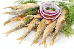 Roasted fish. Roasted and breaded vendace fish on dish Stock Photo