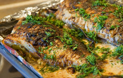 Roasted fish. With herbs and oil stock images