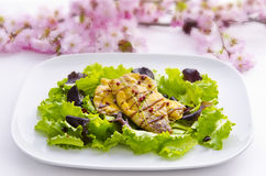 Roasted fish dish meal Royalty Free Stock Photography