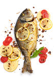 Roasted fish  Dorado Stock Image