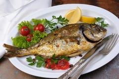 Roasted fish  Dorado Stock Photo