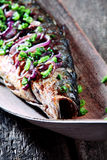 Roasted Fish Garnished with Red and Green Onions Royalty Free Stock Photography