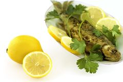 Roasted fish with lemon Royalty Free Stock Photos