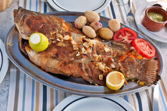 Roasted fish on the plate Royalty Free Stock Photography