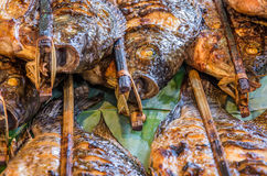 Roasted Fish Skewers - Laos Style Stock Photography