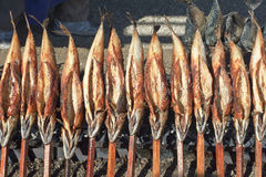 Roasted Fish on a Stick Stock Photography