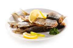 Roasted fish and vegetables Royalty Free Stock Photo