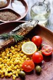 Roasted fish with vegetables Stock Images