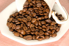 Roasted fresh coffee beans royalty free stock photo