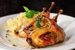 Roasted or fried quail with herbs and tagliatelle Royalty Free Stock Photography