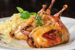 Roasted or fried quail with herbs and tagliatelle Royalty Free Stock Photo