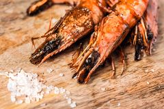 Roasted fried shrimps with salt on wood royalty free stock image