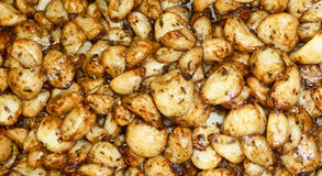 Roasted garlic Royalty Free Stock Images