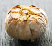 Roasted garlic bulb Royalty Free Stock Photography