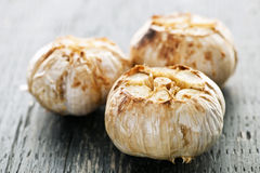 Roasted garlic bulbs Stock Images