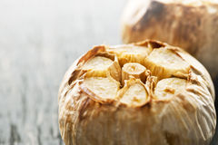 Roasted garlic bulbs Royalty Free Stock Photo