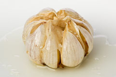 Roasted Garlic Head Royalty Free Stock Photography