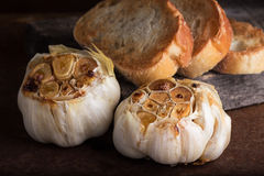 Roasted garlic. Heads on rustic surface with toasted bread Royalty Free Stock Photography