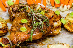 Roasted garlic and lemon turkey with vegetables and rosemary. Homemade dinner Royalty Free Stock Images