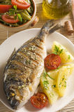 Roasted gilt. Fish with potatoes and (garlic, parsley) sauce Royalty Free Stock Images