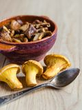 Roasted Golden Chanterelles Royalty Free Stock Photo